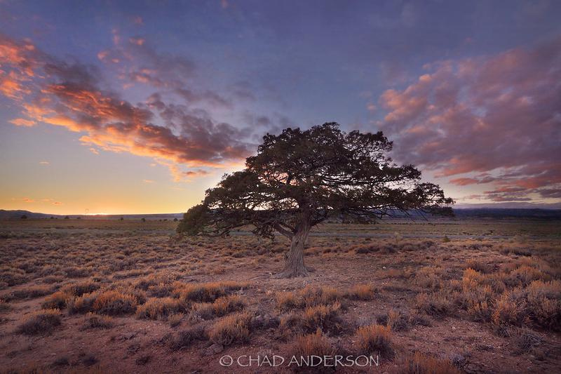 Cedar Valley Sunset 2