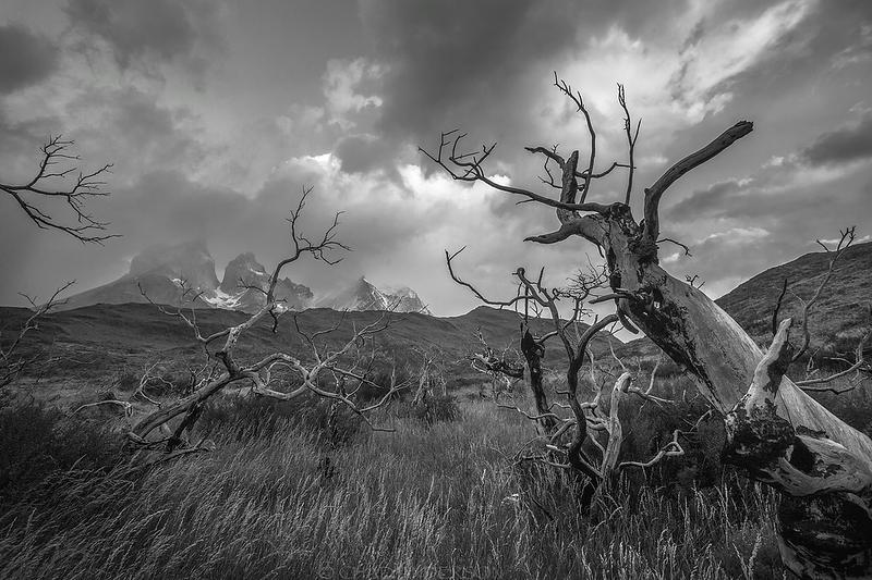 Fires of Torres del Paine