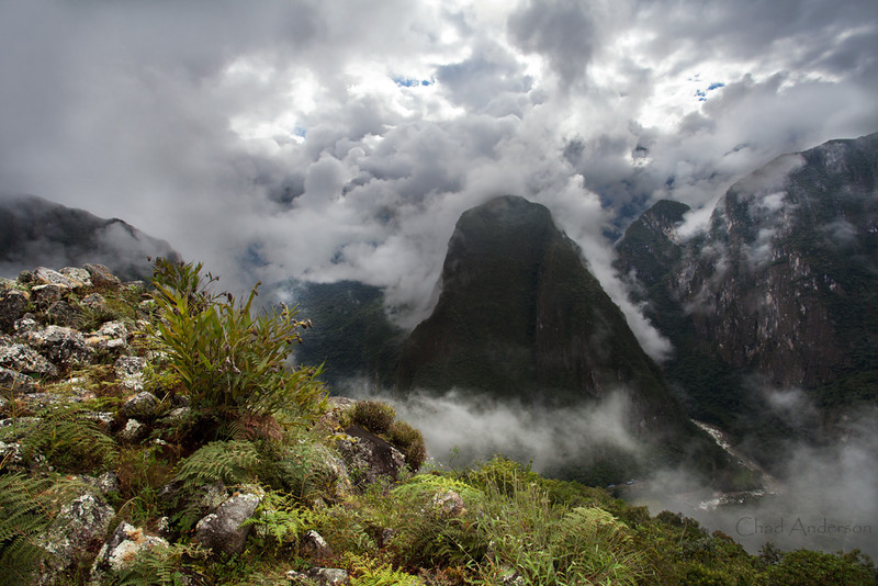 Cloud Forests as seen from Macchu Picchu