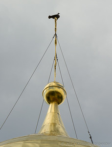 A small statue of a bird sits atop the three-bar cross on the cathedral's large, gilded dome. Local lore is that the bird was turned to stone after witnessing the numerous executions performed in the adjacent courtyard under orders from Ivan the Terrible.