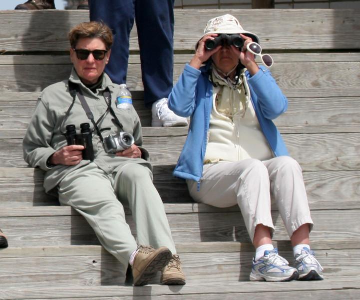 Rachel and Beth birding on their lunch break.