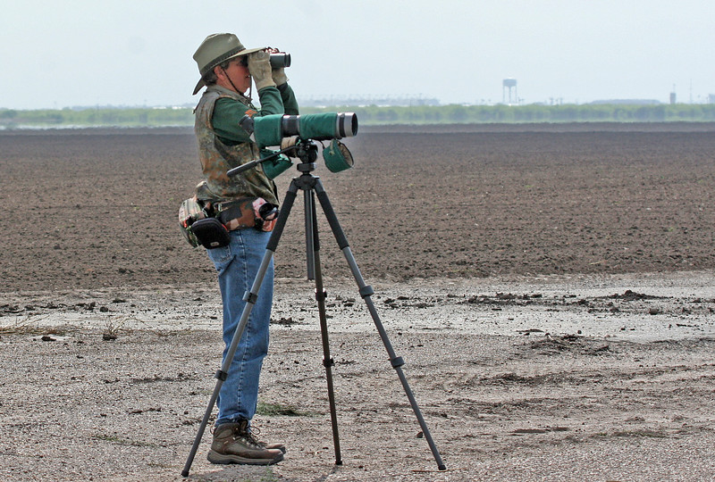 Nan looking for the Burrowing Owl at Laureles Division.