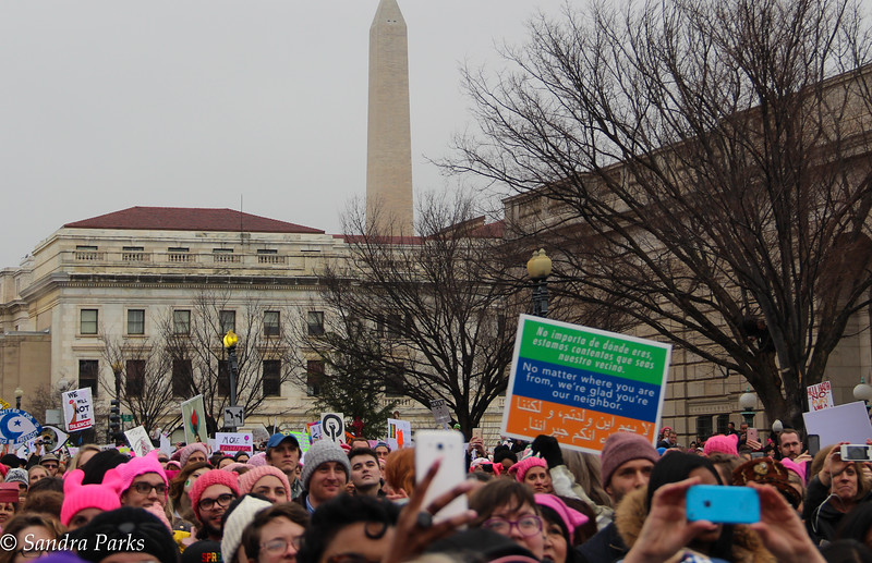 Women's March on Washington, 2017