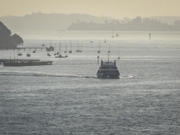 Devonport Ferry - Auckland