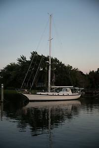 CI7B3931