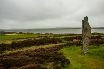 Stone and heather
