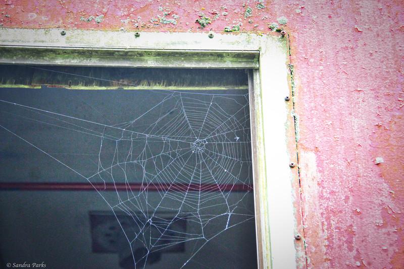9-7-14: Web on a caboose.