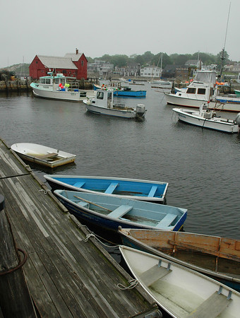 Early June in Gloucester, MA