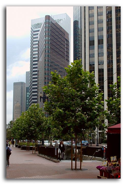 San Francisco Architecture 1