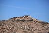 113  Tuzigoot Pueblo