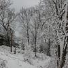 SHenandoah Mountain Snow