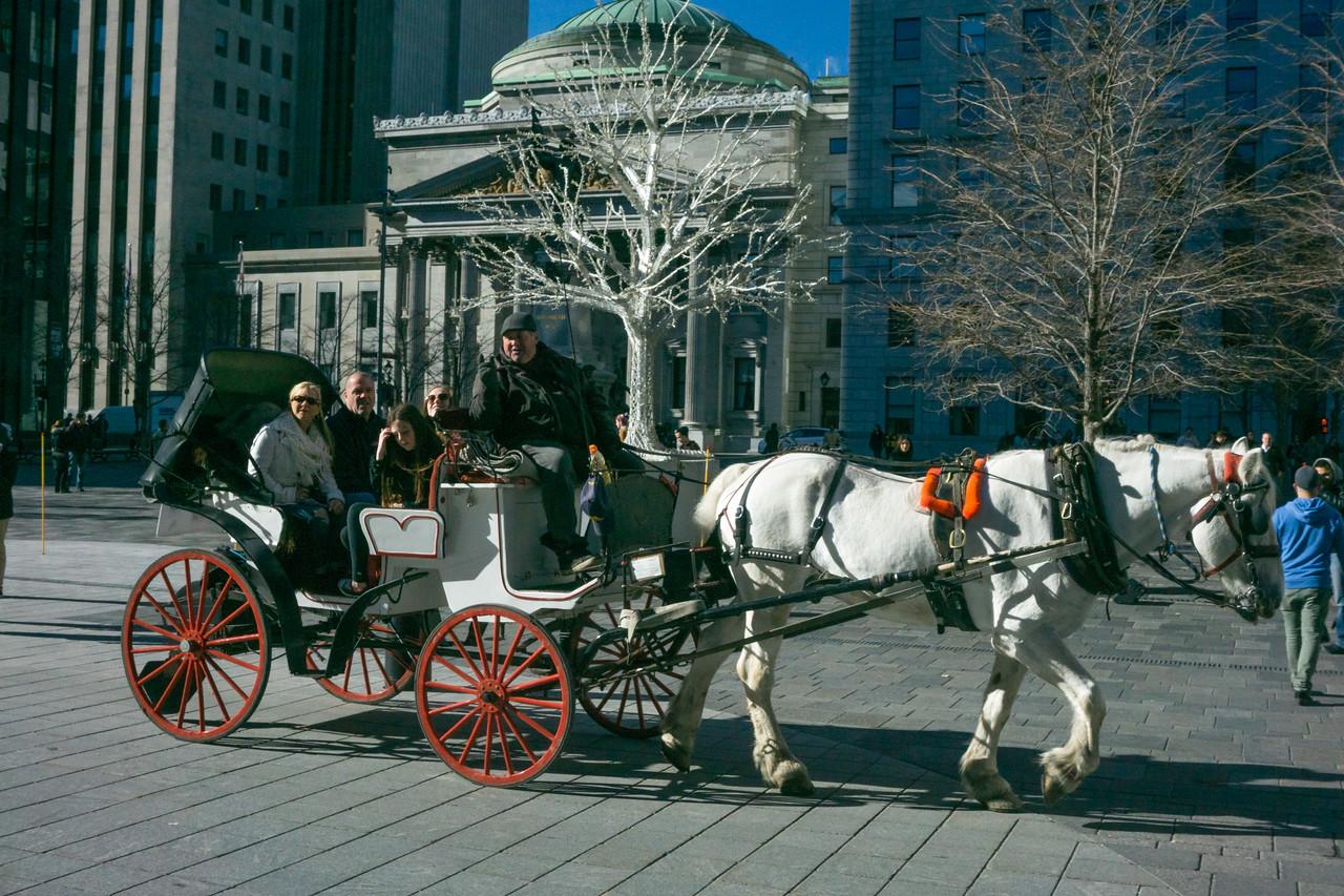 museum and horsecart