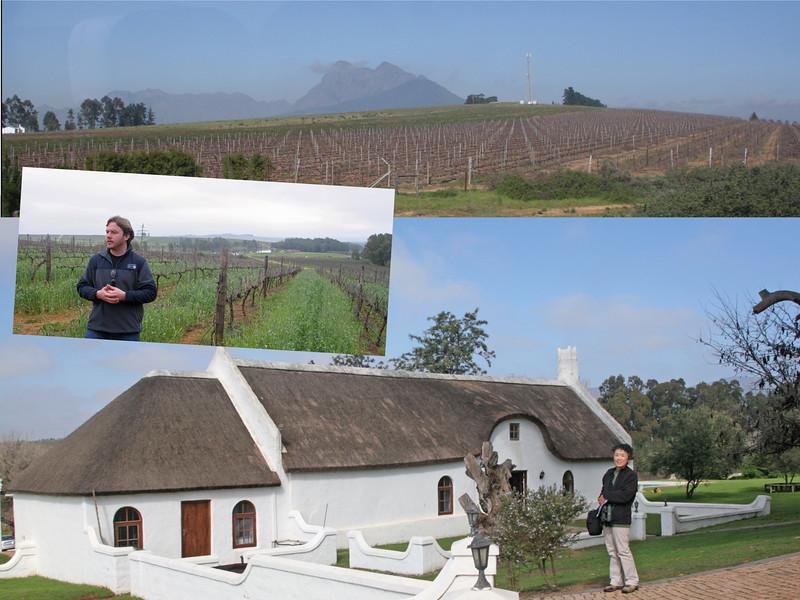 Nelson Wine Estate - Paarl Wineland