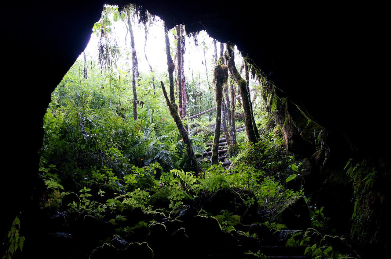 Lava Tube Santa Cruz Island