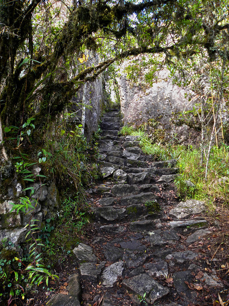 Looking back up the stone stairway. There must be more than 3000 steps