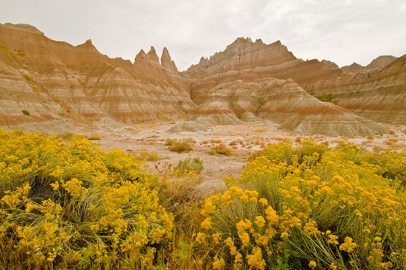 TRSD-8024: Early fall in the Badlands
