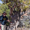 Greg and a Gnarly Juniper