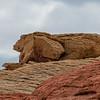 Guardian of teh Desert Formation