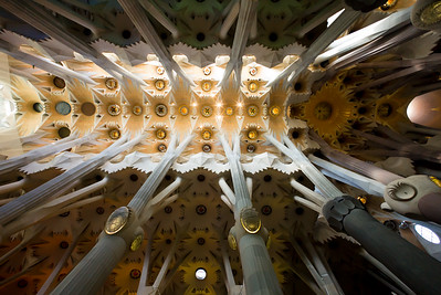 La Sagrada Familia - Ceiling 1