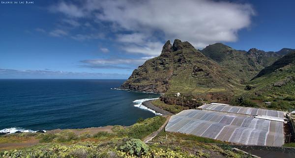 Tenerife 2014