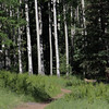 Kachina Peaks wilderness