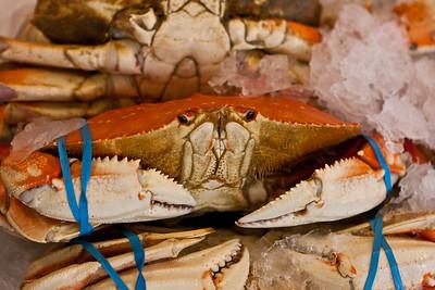 """You've Got Crabs @#$ Face!"""