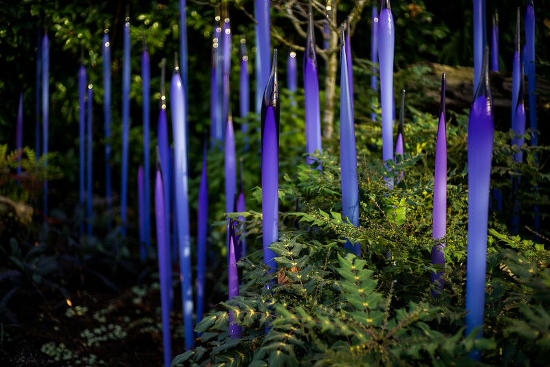 Seattle Chihuly Glass Art Museum - 0012