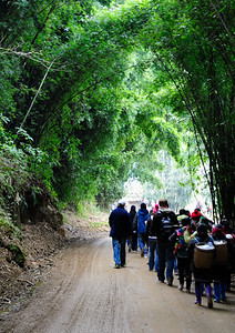 our group trekking
