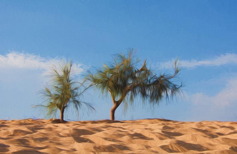 Yellow sand dunes, Mui Ne, Vietnam