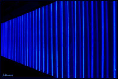 Blue Neon Freemont Street
