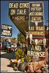 Dead Cows On Sale Boulder City
