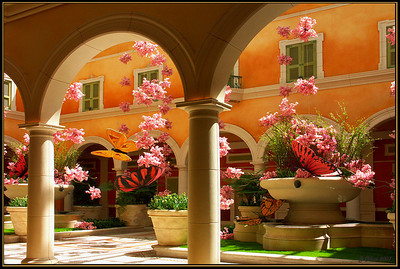 Bellagio Gardens  Las Vegas Nevada
