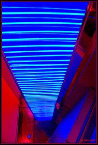 Blue Neon Wall Neonoplis Las Vegas