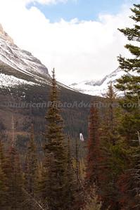Hidden Waterfall.  Glacier NP.