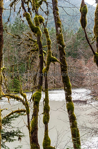 OlympicNP_0223