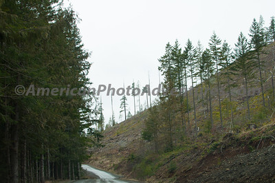 OlympicNP_0216