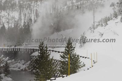 Yellowstone2012_0324