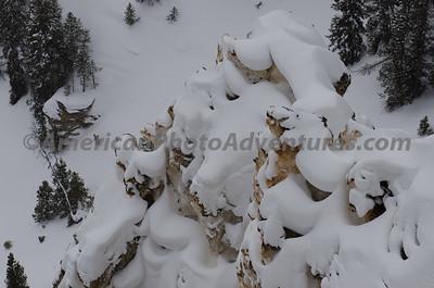 Yellowstone2012_0257