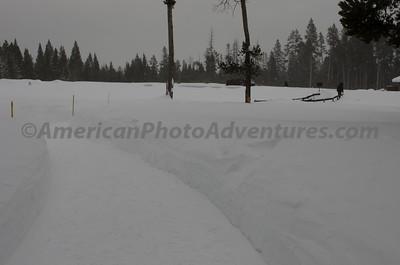 Yellowstone2012_0313