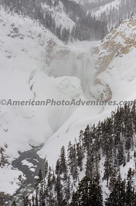 Yellowstone2012_0250