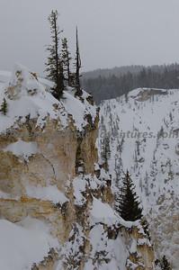 Yellowstone2012_0283