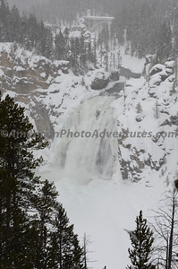 Yellowstone2012_0295
