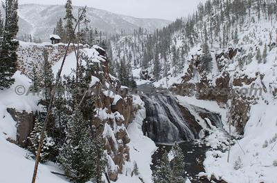 Yellowstone2012_0194