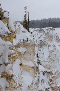 Yellowstone2012_0233