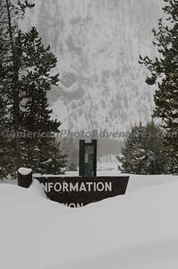 Yellowstone2012_0141
