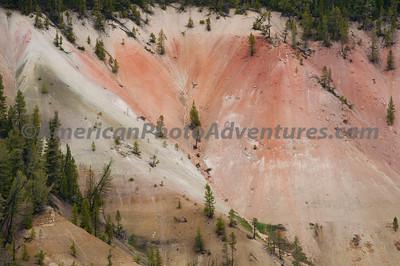 Yellowstone NP.