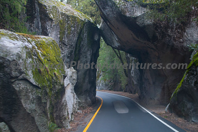 Yosemite_0021