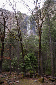 Yosemite_0027