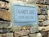 Calamity Jane Grave