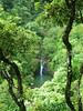 Pouhokamoa Falls 1